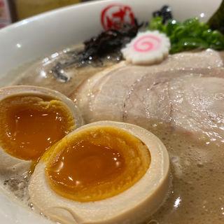 始豚Special(ハレノチ晴)