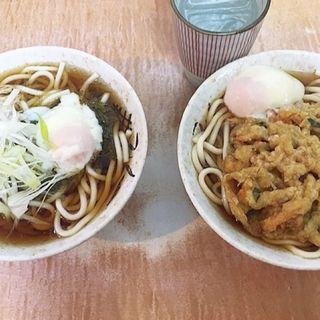 天ぷらうどん(肉そば・肉うどん 南天 本店)