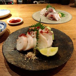 根蛸(高太郎 (こうたろう))