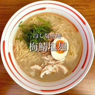 限定麺 冷し塩拉麺 梅塩鯖麺(ざいとん )