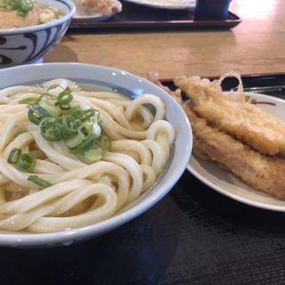 ひやかけ小(うつ海うどん )