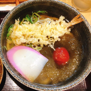 天ぷら梅昆布うどん(自家製麺 うどん 屋島)