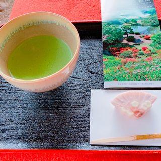 お抹茶セット(六義園 吹上茶屋 )