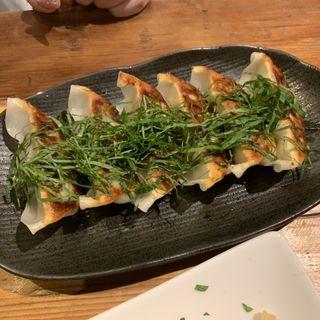 ハレノヒ餃子