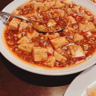 マーボー豆腐(普通の辛さ)