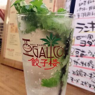 パクチーチューハイ(アガリコ 餃子楼 新橋店)