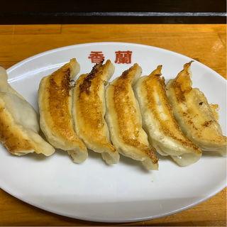 焼餃子(香蘭 )