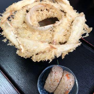 ごぼう天うどん(大地のうどん 本店)
