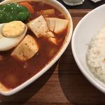 スープカレー(赤) チキン