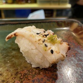 たこ 炙り(たく海 )