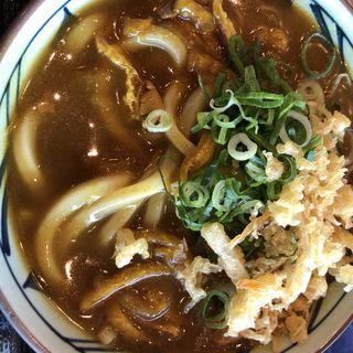 カレーうどん(丸亀製麺 飯田橋サクラテラス店 )