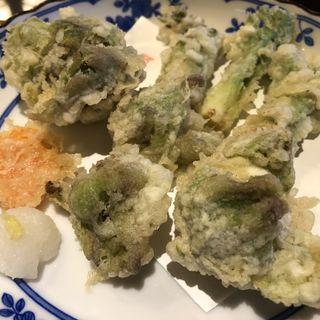 タラの芽と蕗のとうの天ぷら(やま竹 (竹蔵蕎麦 やま竹(たけぞうそば やまたけ)))