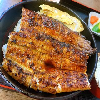鰻丼(うなぎのきしかわ)