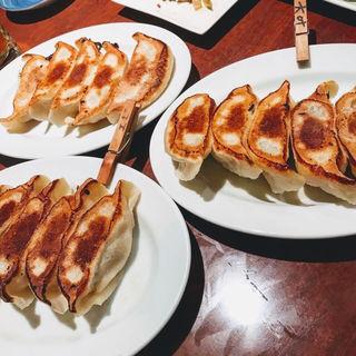 焼き餃子(餃子のハルピン (ギョウザノハルピン))