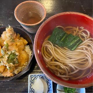 小エビとアオリイカのかき揚げ丼(小)と温かいお蕎麦のランチセット