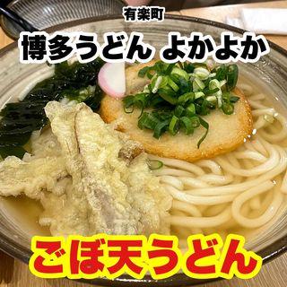 ごぼ天うどん(博多うどん よかよか)