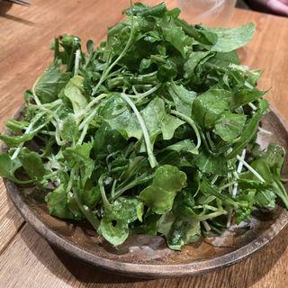 どっさりグリーンボンバーサラダ