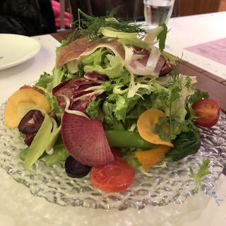15種類の野菜とハーブのイタリアンサラダ(ピッツェリア・パドリーノ・デル・ショーザン (PIZZERIA PADRINO DEL SHOZAN))