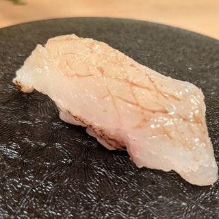 オコゼ焼霜造り(GEJO)