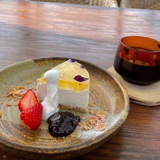 レアチーズケーキセット(cafe Karin 果林 (カリン))