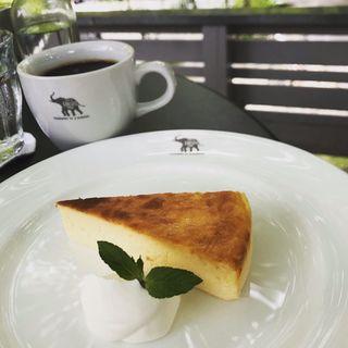 チーズケーキ(ナス・ショウゾウ カフェ (NASU SHOZO CAFE))