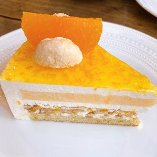 清見オレンジとマスカルポーネのケーキ