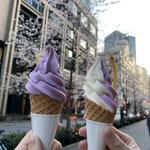 紫いもソフトクリーム(芋屋金次郎 日本橋店 )
