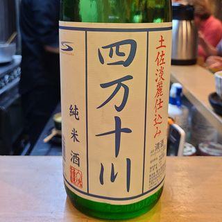 菊水酒造「四万十川 純米酒 土佐淡麗仕込み」