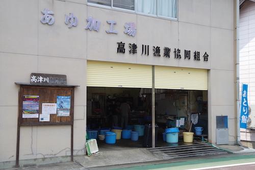 高津川漁協1