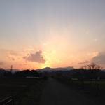 yurie_minami